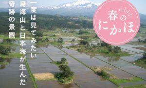 一度は見てみたい 鳥海山と日本海が生んだ 奇跡の景観